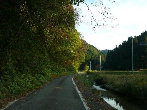 林道 美山大野線